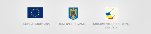 Uniunea Europeana, Guvernul Romaniei, Instrumente Structurale